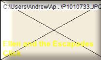 Ellen and The Escapades